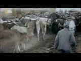 Апокалипсис: Первая мировая война 3 часть / Ад (Европа горит) / Europa brennt (2014)